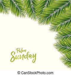 palma, plano de fondo, domingo