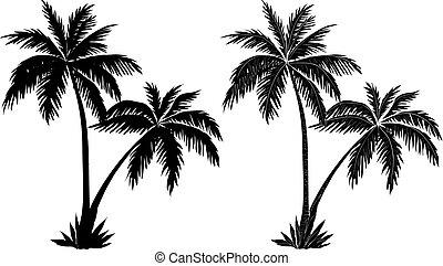 palma, siluetas, árboles, negro