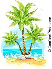 Palmeras de coco en la isla tropical