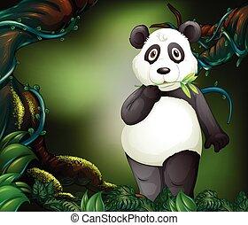 Panda de pie en el bosque profundo