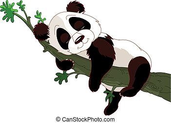 Panda durmiendo en una rama