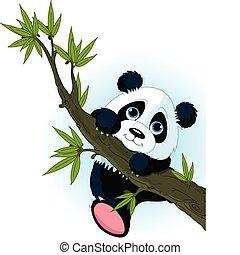 Panda gigante trepando