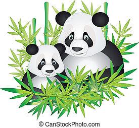 panda, vector