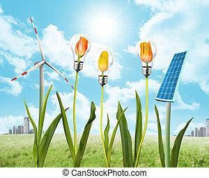 Panel solar y energía eólica