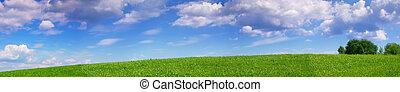 panorámico, pradera, paisaje, verano
