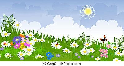 panorama, flor, pradera