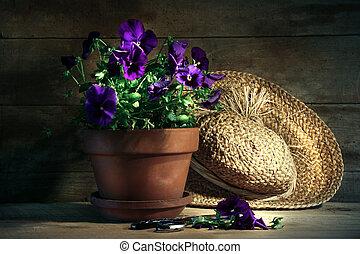 Panzas púrpura con sombrero de paja