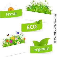 Papel pegajoso con hierba verde y flor