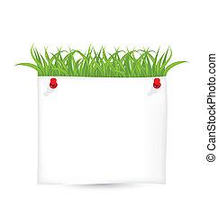 Papeles con hierba verde aislados en el fondo blanco