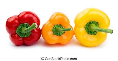 Paprika (pepper) roja, color naranja y amarillo aislado en un fondo blanco