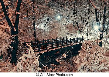 parque, central, invierno
