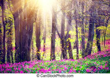 Parque de primavera con hierba verde, flores silvestres y árboles. Hermoso paisaje natural