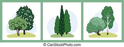 parque, design., bushes., ilustración, bosque, caricatura, caduco, elementos, plants., juego, diseño, conjunto, árboles, paisaje., colección, verde, hand-drawn, árbol hoja perenne, vector