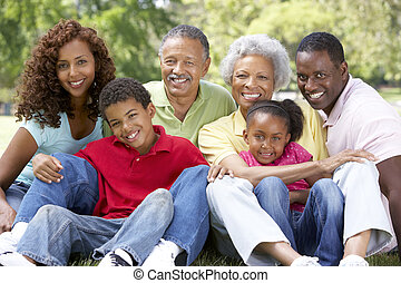 parque, extendido, grupo, retrato de la familia