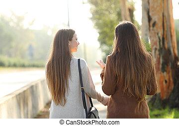 parque, mujeres que hablan, dos, vista, espalda, ambulante