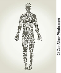 Partes del cuerpo de la persona