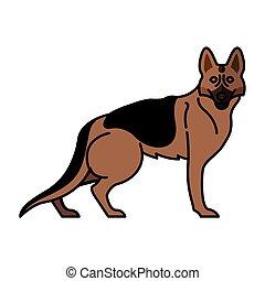 pastor alemán, carácter, mascota, perro, mascota, casta