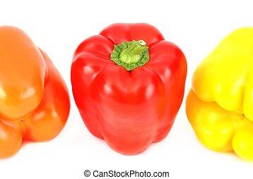 Patrón colorido de pimienta
