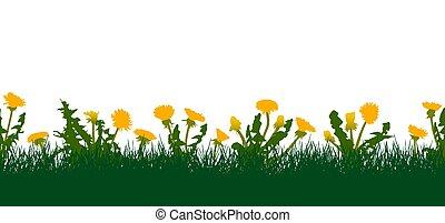 patrón, dandelions., ilustración, seamless, pasto o césped, vector, amarillo, prado