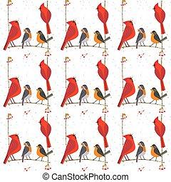 Patrón de aves