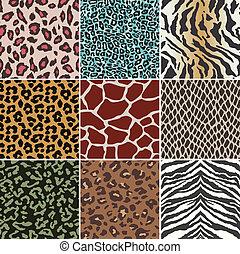 Patrón de piel de animal