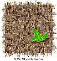patrón, orgánico, teja