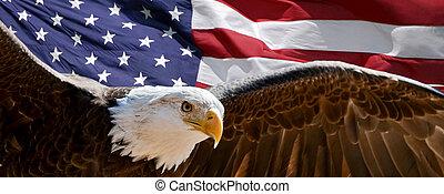 patriótico, águila
