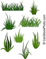 Patrones de hierba verde