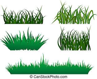 patrones, pasto o césped, verde