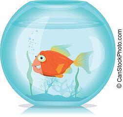 Peces de oro en el acuario