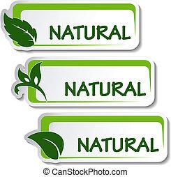 Pegatinas naturales vector con hoja