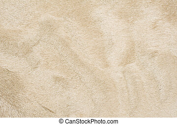 Pelo color beige