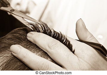 pelo, primer plano, corte