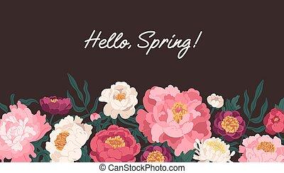 peonías, ilustración, plano de fondo, fondo, blossomed, oscuridad, plano, flores, hola, vector, aislado, primavera, frontera, inscription., floral, horizontal, botánico, delicado