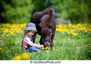 pequeño, campo, caballo, niño