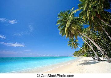 perfecto, isla tropical, playa, paraíso