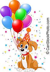 Perrito de cumpleaños