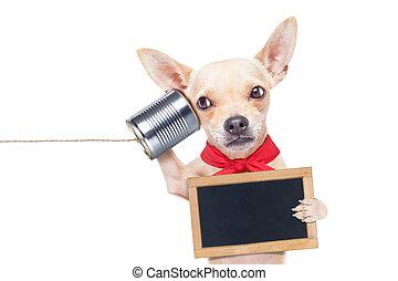 Perro al teléfono