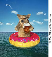 Perro bebe cerveza en rosquilla inflable