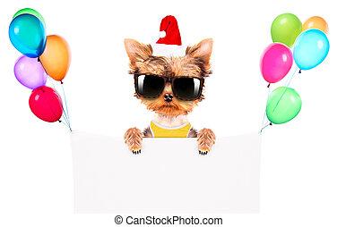 Perro de Navidad como Papá Noel con pancarta