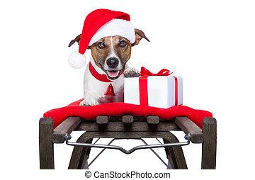 Perro de Navidad en trineo