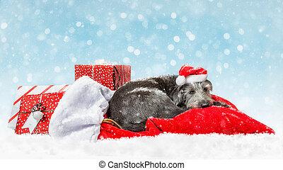 Perro de Santa Cansado con regalos de Navidad en la nieve