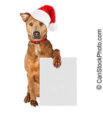 Perro de Santa Claus de Navidad con signo en blanco