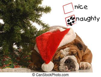 Perro malo de Navidad