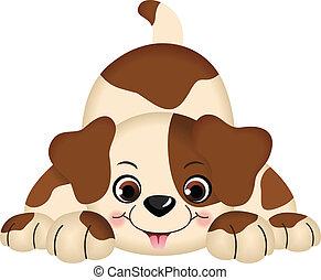 Perro mascota jugando