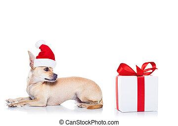 Perro navideño de Santa