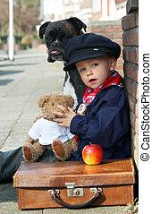 Perro, Teddy y chico