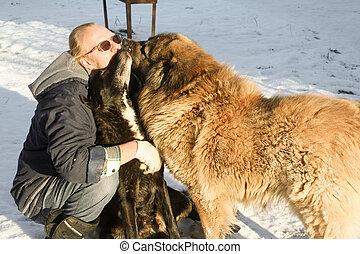 Perros besando al dueño