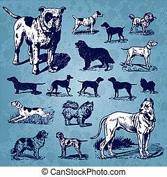 Perros de colección (vector)