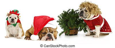Perros de Navidad